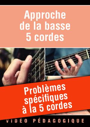 Problèmes spécifiques à la 5 cordes