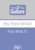 Hey There Delilah - Plain White T's