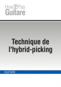 Technique de l'hybrid-picking