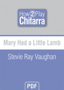 Mary Had a Little Lamb - Stevie Ray Vaughan
