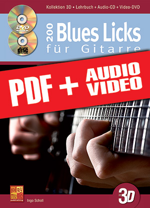 200 Blues Licks für Gitarre in 3D (pdf + mp3 + videos)