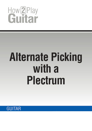 Alternate Picking with a Plectrum